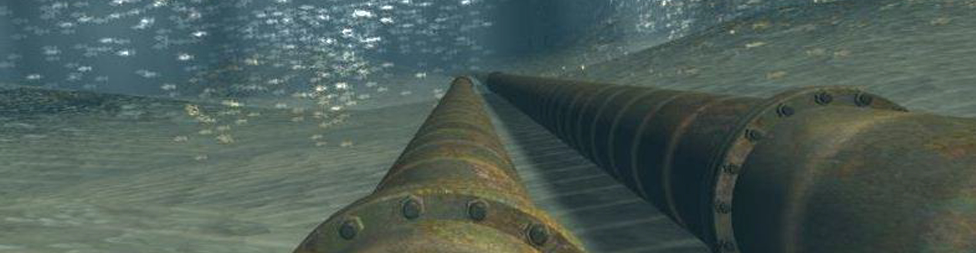 subsea banner